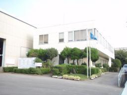 61ichikawa